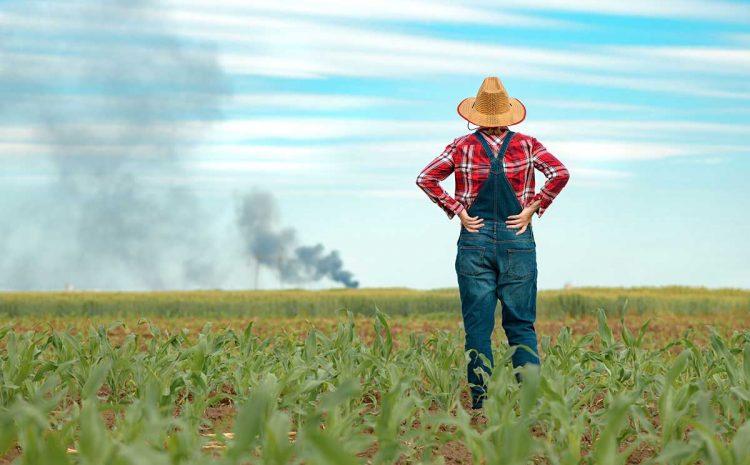 ملخص تأمين المحاصيل الزراعية